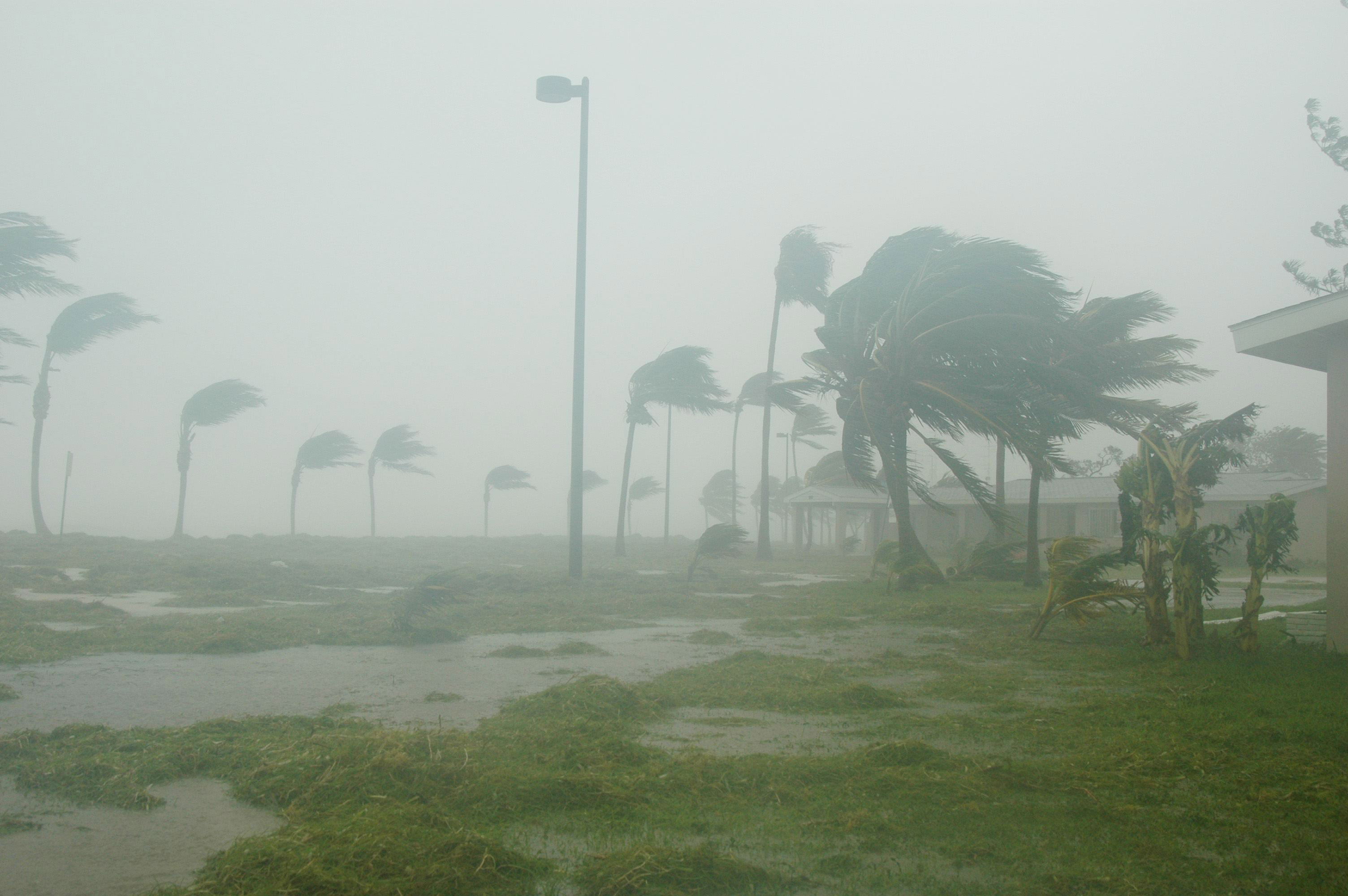 Hurricane Preparedness for Businesses