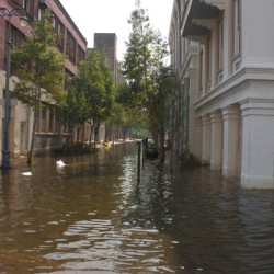 In wake of Hurricane Sandy, free webinar explores strategies for unified emergency messaging