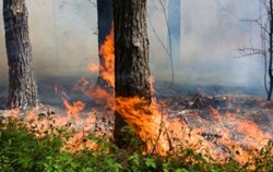 Wildfire burns in one state, risks rise in another